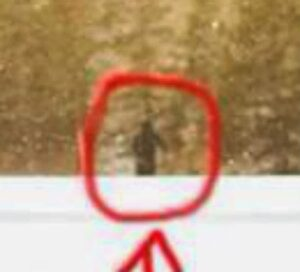 Zoomed & Cropped - Just a person? Or Bigfoot?