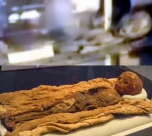 Thebes mummy found 1856, transferred to US Smithsonian in 1956