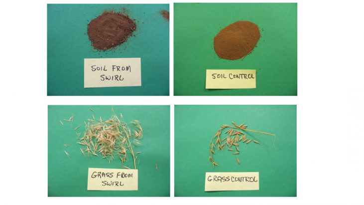 Examination of Soil and Grass Samples That Were in Close Contact with a UFO (May 18, 2009, Buffalo, Oklahoma)