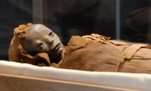 "Extraterrestrial Mummy Found In Egypt case file determined a hoax. This is believed to be the actual photo used to then ""photoshop"" to make it look like an alien."