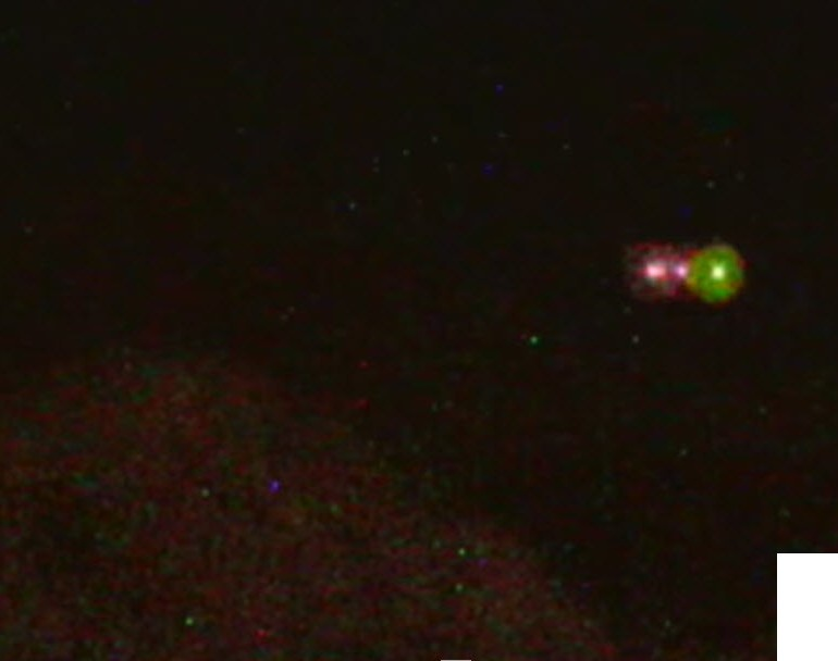 UFO over Sabino Canyon, Tucson, Arizona