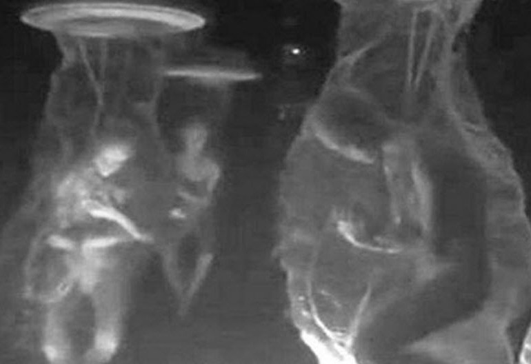 """Leaked"" Underground Dulce Base Alien Photo by Thomas Costello"