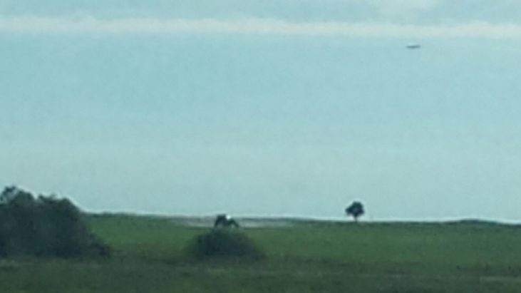 Strange Object in Sky Photographed in Strongfield, Saskatchewan, Canada