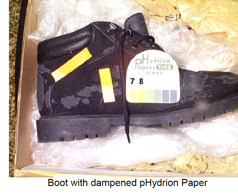 Analysis of a Boot Worn by A Witness During a Purported Close UFO Encounter (Indiana/Ohio, August 24-25, 2005)