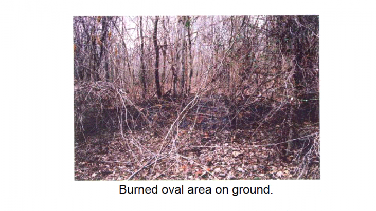 Analysis of Samples from Burned Ground and Tree Trunks Related to a UFO Close Contact (Gaffney, South Carolina – February 22, 2004)