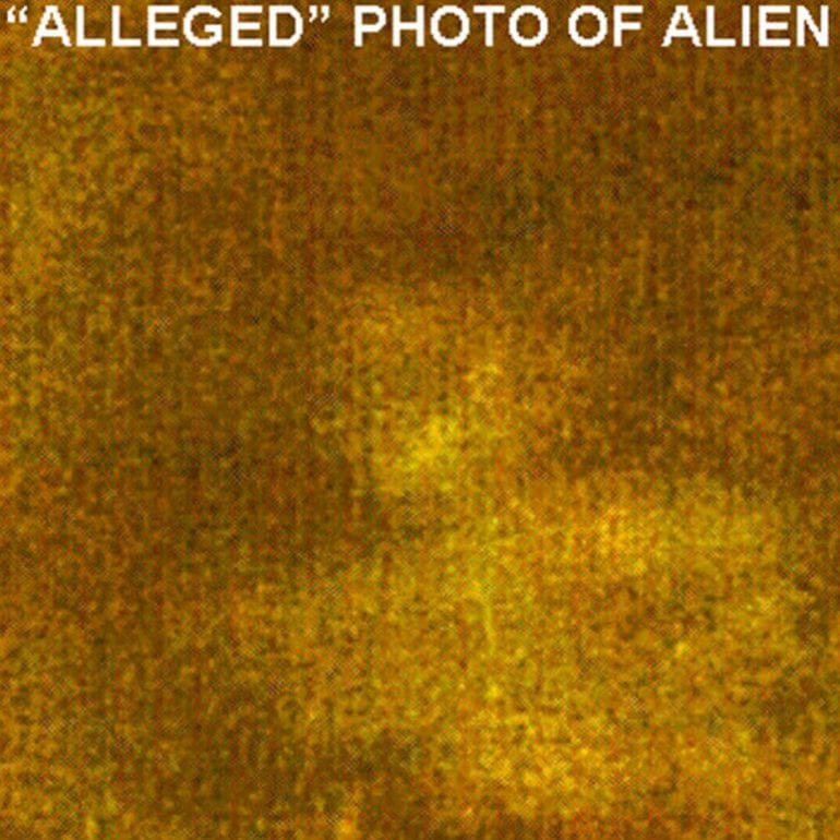 Photos Taken of Alien Being & Flying Disks