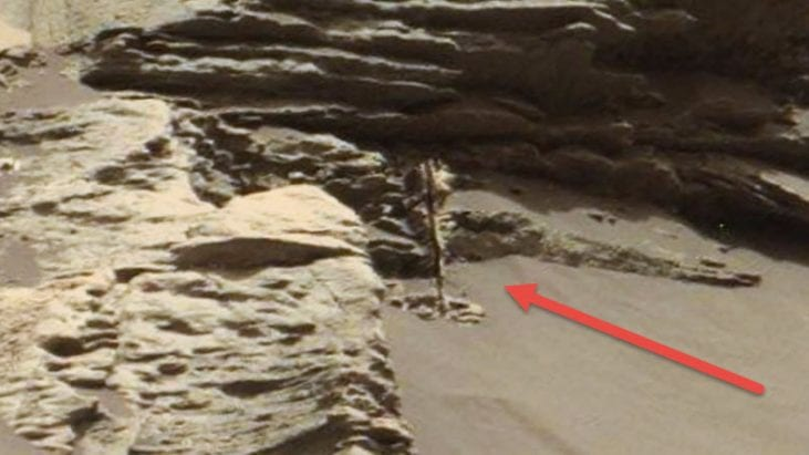 "Plant Life or Tree on Mars? Or Glitch? Mars ""Gigapan"" Shows Strange Anomaly"
