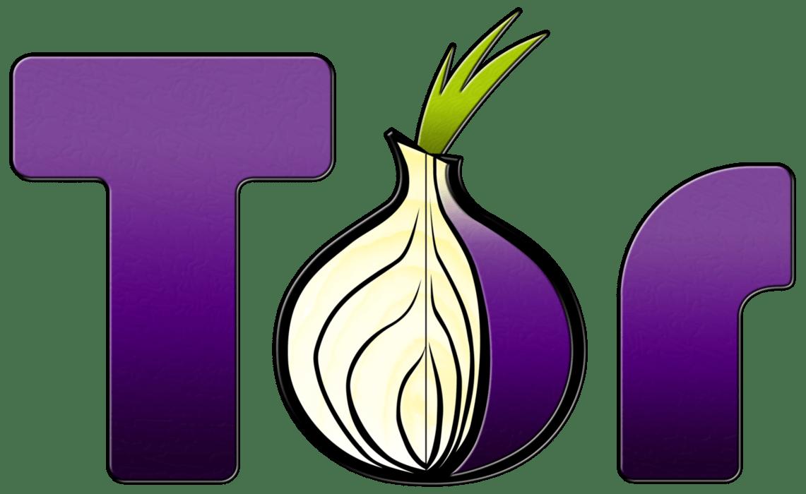 Инструкция по использованию tor browser gydra tor darknet onion hydraruzxpnew4af