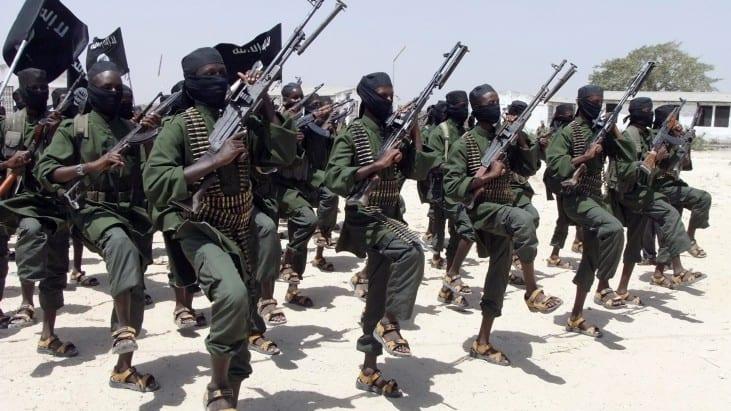 Intelligence on Terrorist Organizations and Capabilities