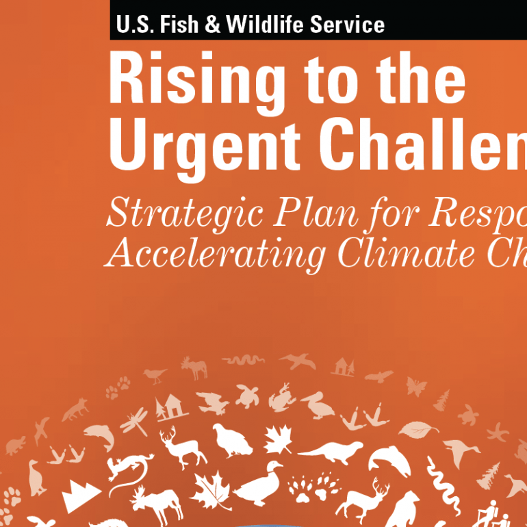 Rising to the Urgent Challenge Strategic Plan for Responding to Accelerating Climate Change, September 2010