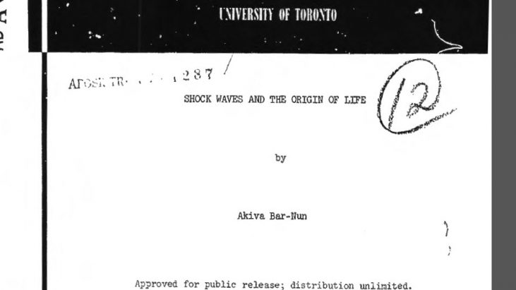 Shock Waves and the Origin of Life, January 1977